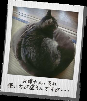 ぬくま~る1.png
